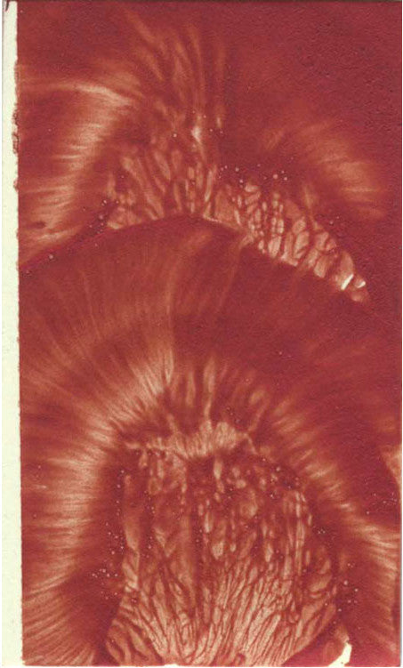 "James Nares 3 x 5"" Artists Draw, BOMB #15"