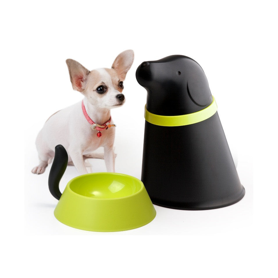 Pupp Pet Feeder