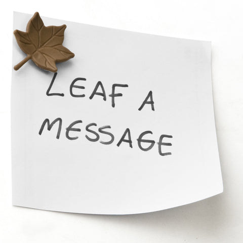Leaf a Message