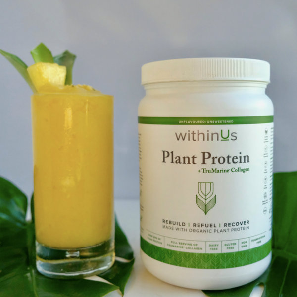 Tropical Smoothie Collagen Protein Recipe