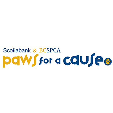 Scotiabank & BCSPCA Paws for a Cause