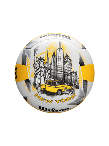 AVP New York Open Official Ball