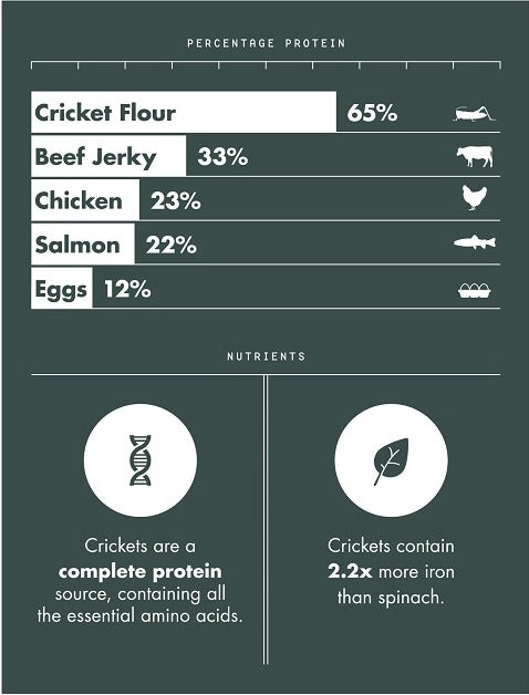 Comparison chart of protein content in cricket flour vs. other meats