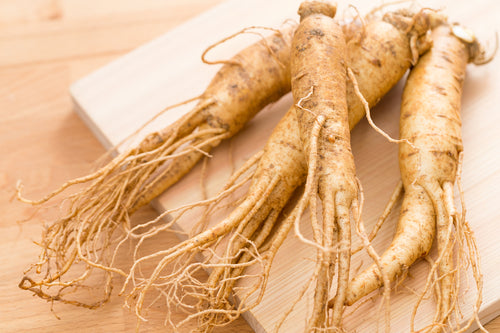 Ginseng roots, with the resemble look to human, are believed to cure many diseases in Chinese traditional medicine.
