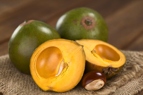 Lucuma fruits have the ritual value for fertility in Central America and often called as 'golds of the Incas'
