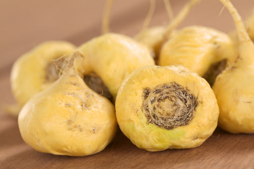 Maca roots look similar to the radishes and hold loads of nutritional values for your health