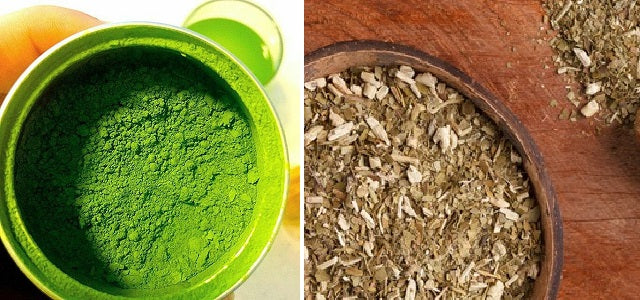 differences between matcha vs yebra mate comparison