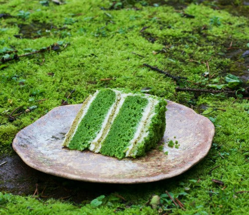 Matcha Genoise Nettle Lemon Cake recipe with douglas fir-grapefruit buttercream