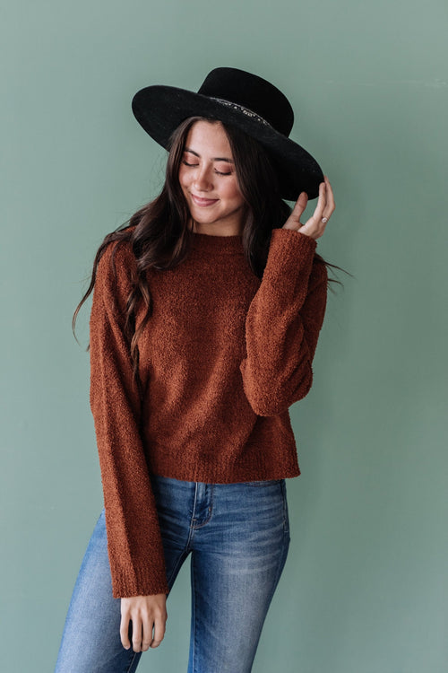 The Newton Knit Sweater in Mocha