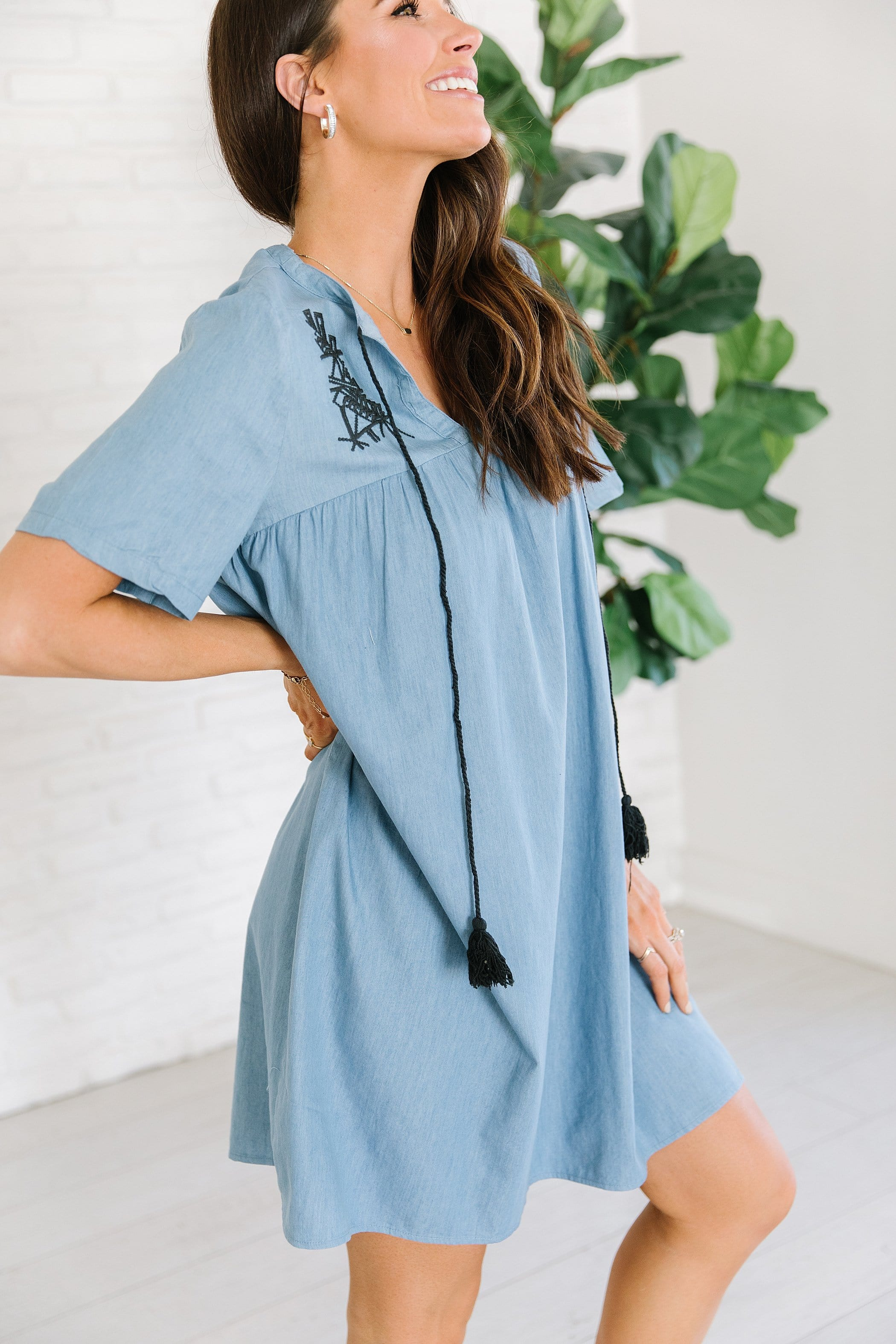 The Downey Embroidered Dress in Denim