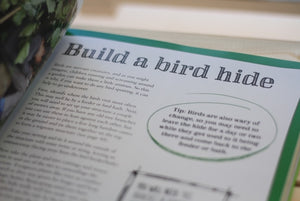 101 things for kids to do outside bird hide