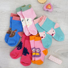 Load image into Gallery viewer, Blade & Rose 5 Pack Pastel Coloured Socks