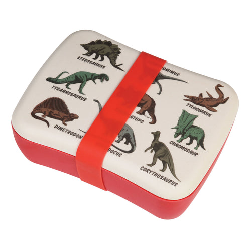Dinosaur Bamboo Lunch Box