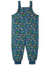 Load image into Gallery viewer, frugi bug life parsnip dungarees