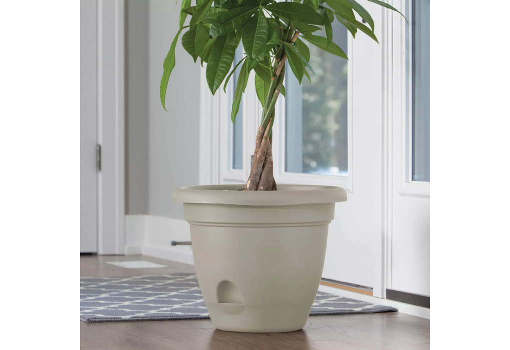 Plastice Self-Watering Pot With Saucer