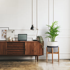 Mid-Century Plant Stands For Indoor Plants