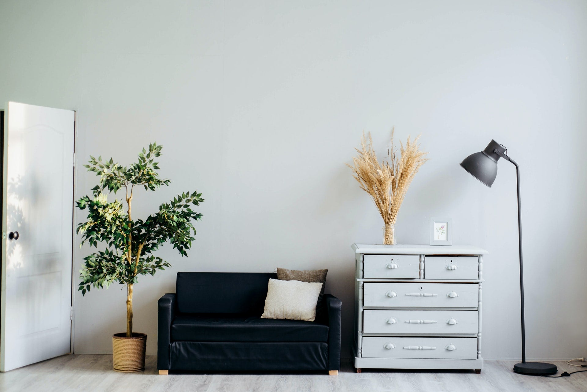 A black couch with indoor plants