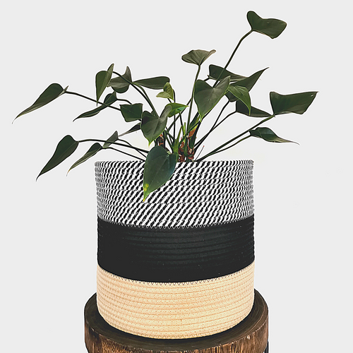 Stylish planter made from handwoven 100% thick cotton rope. Perfect for rustic, modern minimalistic home.