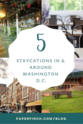 5DCStaycations_PaperFinchDesign