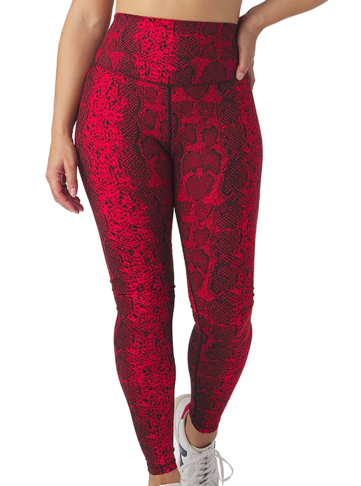 Sultry Legging in Gator