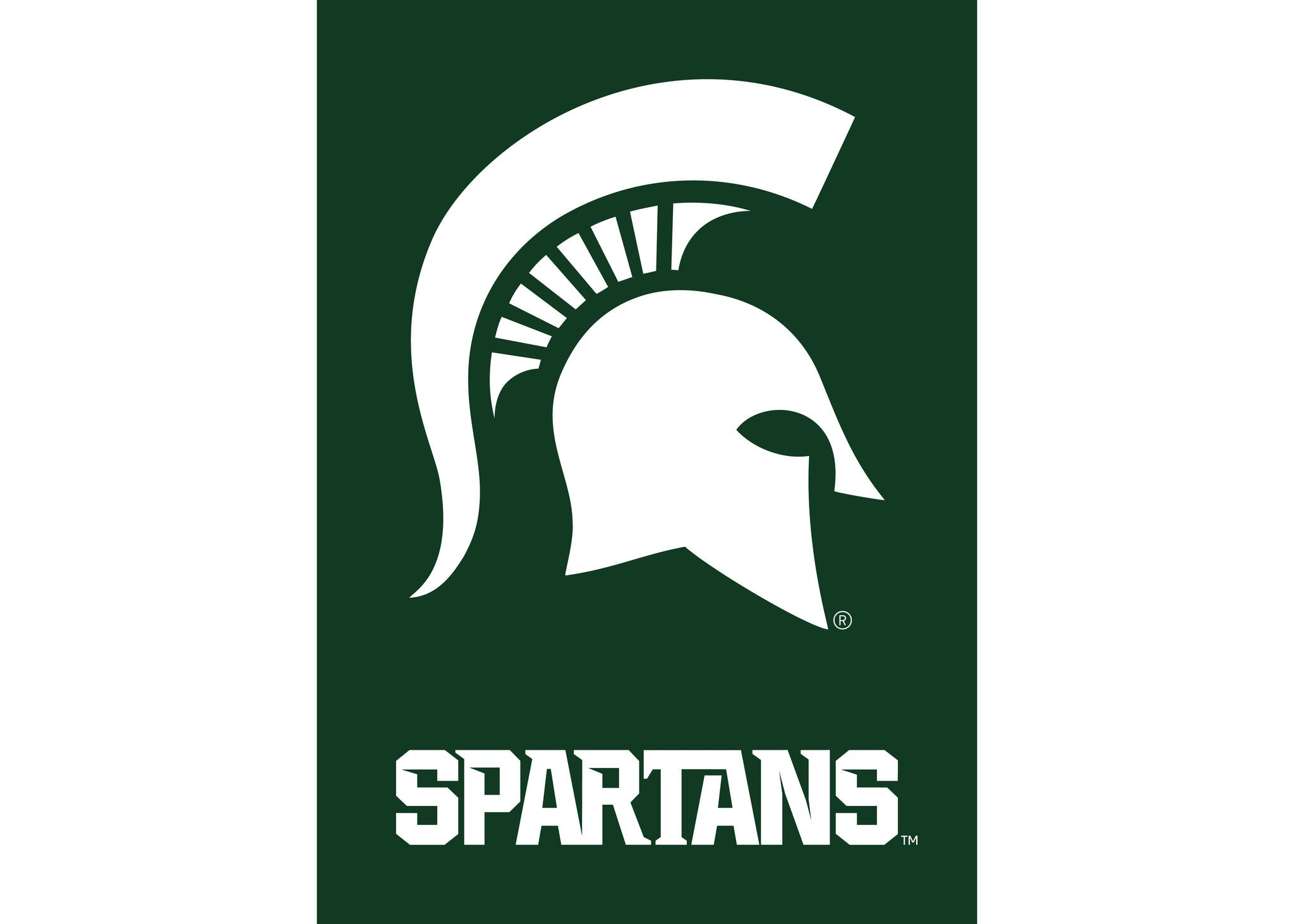 michigan state spartans blanket for a blanket with a purpose