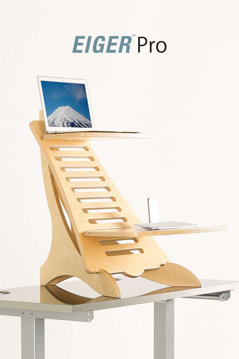 EIGER Pro Standing Desk - I Want A Standing Desk