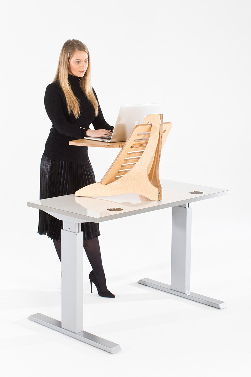 Standing Desk For Laptop Desks With Printer Storage