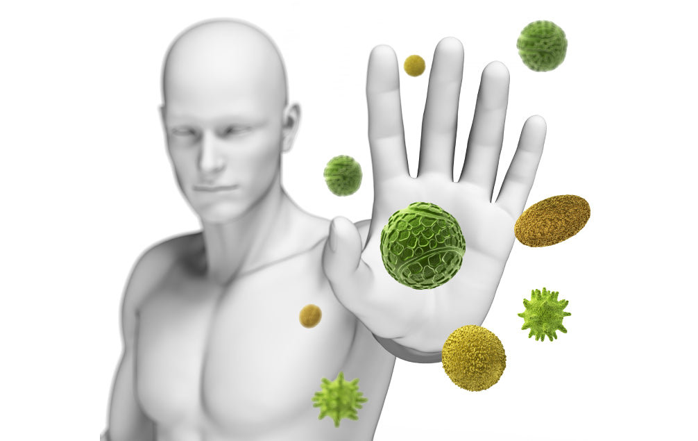 FIVE BEST VITAMINS AND MINERALS FOR A HEALTHY IMMUNE SYSTEM