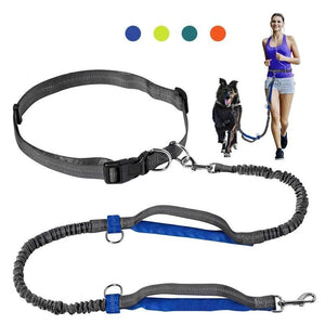 Dual Handles Hands-free Dog Leash - Idealpaws