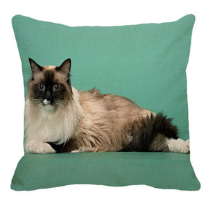 Persian Cat Linen Cushion Cover - Idealpaws