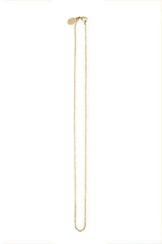Debra Shepard Gold Chain Necklace - 17