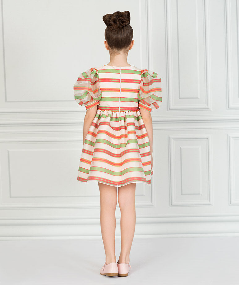 Product Image of Exclusive Organza Jac Dress #3
