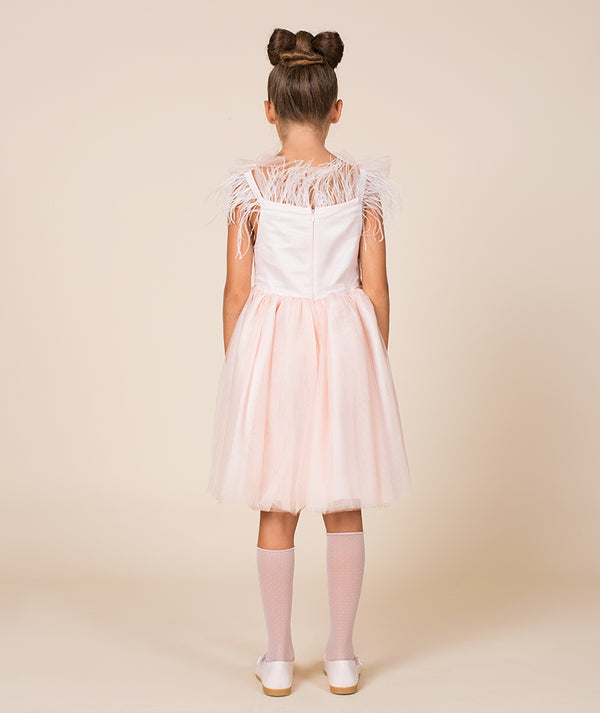 Back of girl in dress with pink tulle and feathers