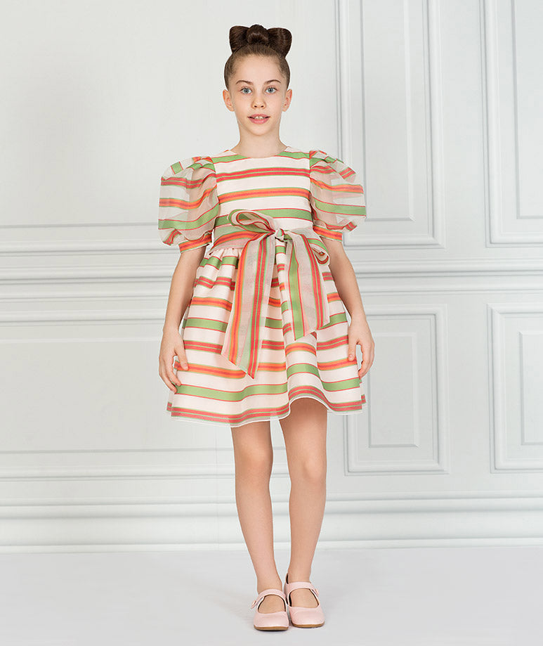 Product Image of Exclusive Organza Jac Dress #1