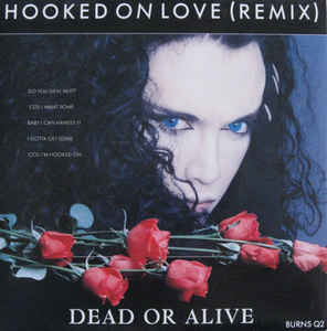 Dead Or Alive ‎– Hooked On Love (Remix) (1987)