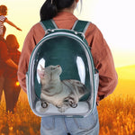CAT BUBBLE BACKPACK