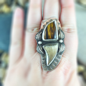 Mandana Studios sterling silver TIGEREYE AND MOSASAUR TOOTH RING