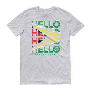 Hello Guyana Mens T-Shirt - Kes Official Online Store