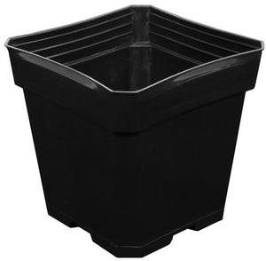 Gro Pro Black Plastic Pot 5.5 in x 5.5 in x 5.75 in (200/Cs)