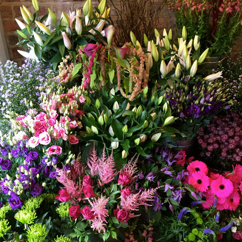 Seasonal cut flower or plant box deliveries