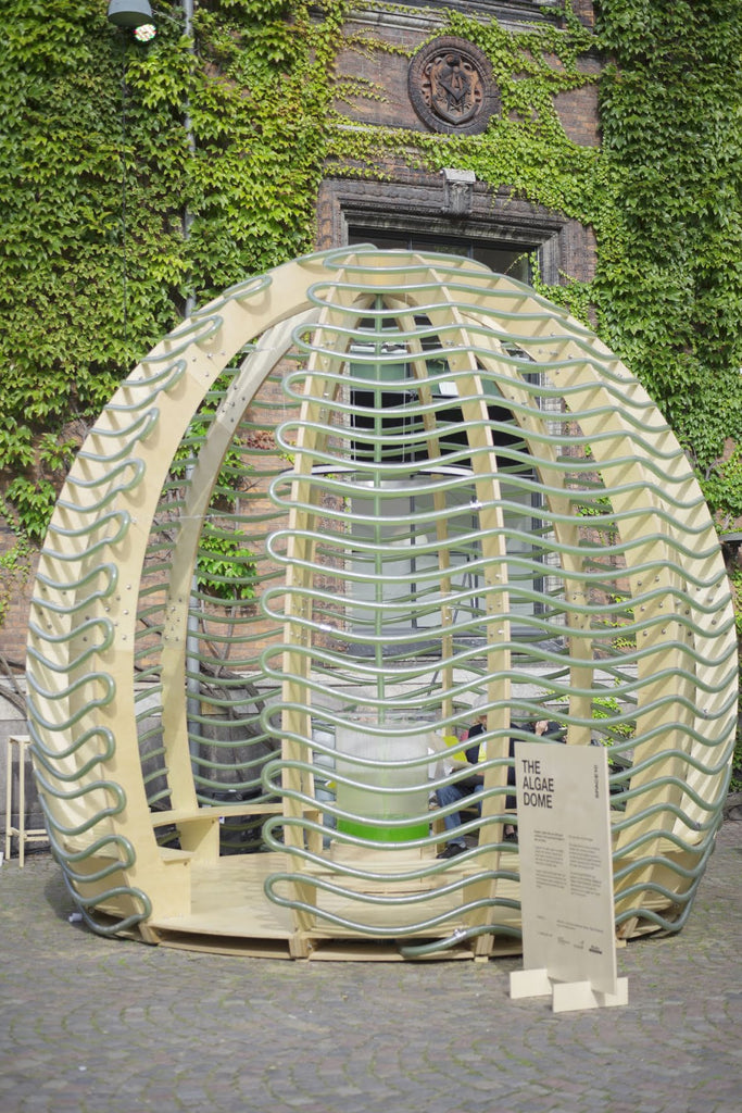 Ikea's Space10 develops the Algae Dome