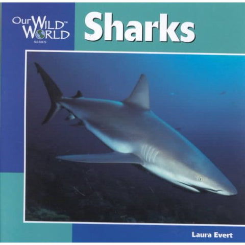 OUR WORLD SHARKS