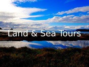 Land & Sea Tours - Waka Tours
