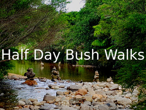Half Day Bush Walks - Waka Tours