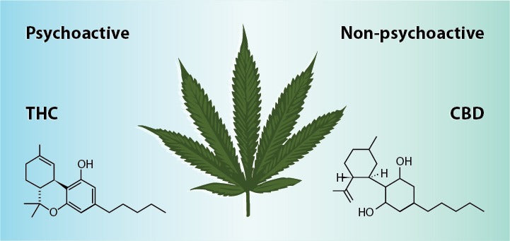 THC vs CBD psychoactive properties, sourced from Leaf Science