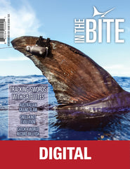InTheBite Volume 19 Edition 07 - October/November 2020 - Digital Edition