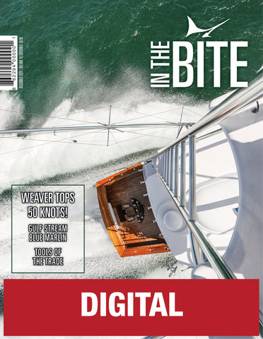 Volume 19 Edition 08 - December 2020 - Digital Edition