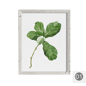 Mirrors Framed Fiddle Leaf Fig Watercolor Painting Leaves Drawing