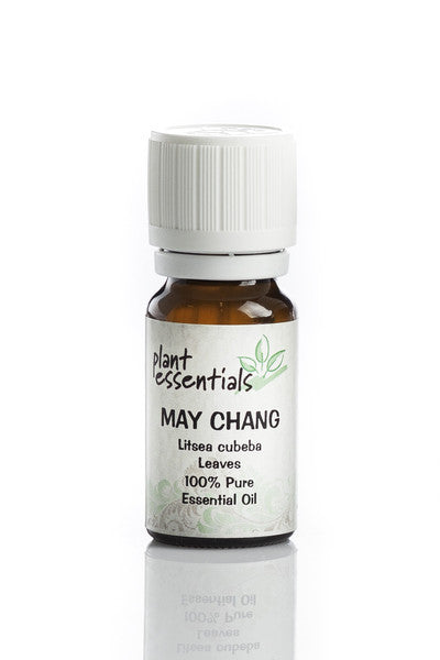 Exploring The Health Benefits And Uses Of May Chang Essential Oil