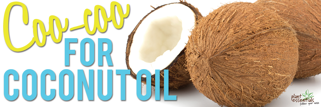 Uses for Coconut Oil on your face, hair, body and pet!